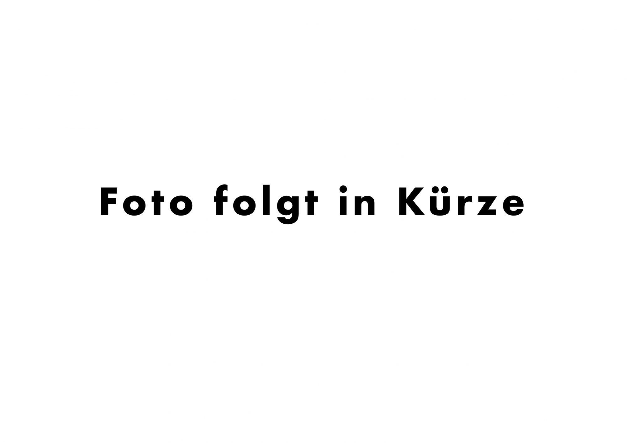 2019-Foto-folgt